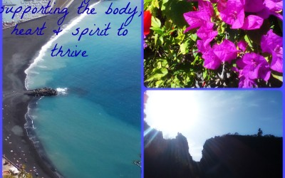 Well-Being ~ Support your Body, Heart & Spirit to Thrive